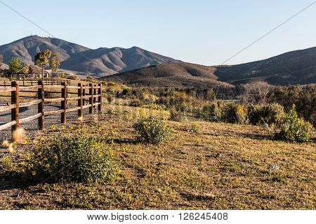 Fence line, flowers and mountain peak at Mountain Hawk Park in Chula Vista, California.