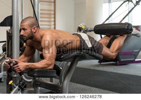 Workout Lying Leg Curls Exercises