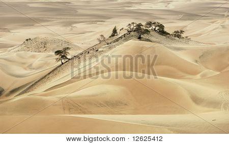Nasca Desert