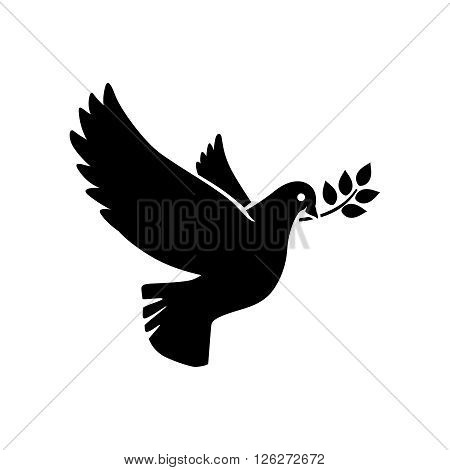 Dove icon. Flying dove with olive twig vector sign