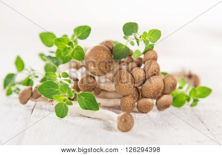 brown beech mushroom on white wooden background, close-up.