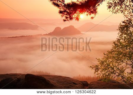 Amazing place with red dreamy mist in valley