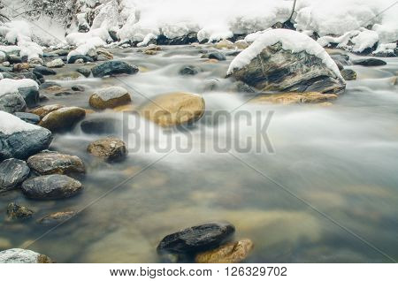 Plant on a mountain river photographed with a long exposure poster