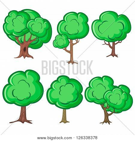 Set of six smooth old trees isolated over white