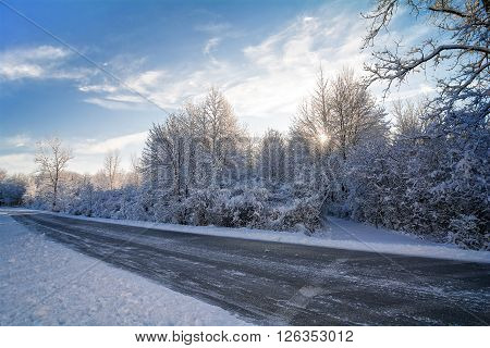 Beautiful tree lined road with snow clinging to the branches against morning sunrise and a bright blue sky.