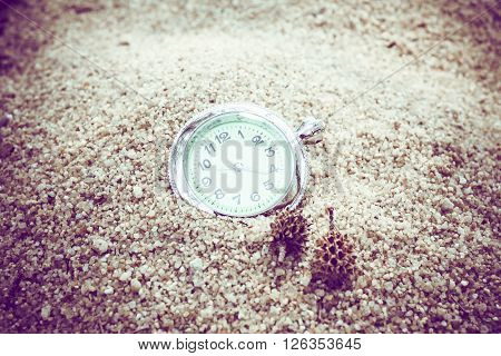 vintage pocket watch on sand with pine nuts.  holiday summertime.