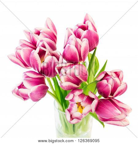 Pink Tulips Bouquet In Vase. Isolated Over White Background. Top View, Selective Focus