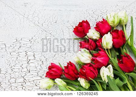 White And Red Tulips On White Wooden  Background. Copy Space, Top View