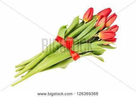 Bouquet Of Red Tulips Decorated With Ribbon, Isolated Over White Background