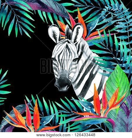 Zebra and exotic flowers. Watercolor jungle card. Hand painted illustration with zebra on black background for your design.