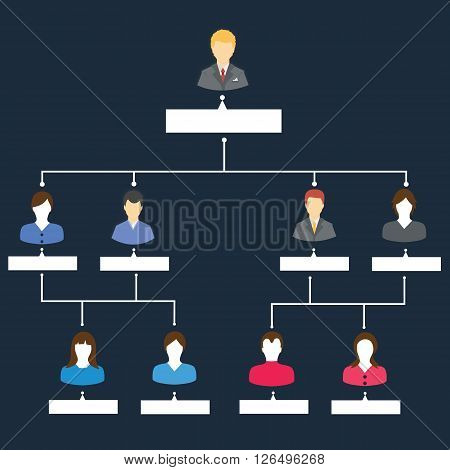 organizational structure chart template hierarchy of people worker at company or corporate organization vector