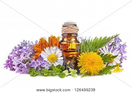 herbs and flowers with organic aromatic essential oil