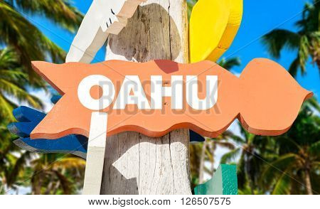 Oahu signpost with palm trees