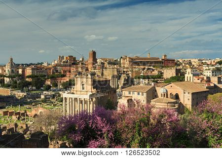 Viewpoint of the Forum Romanum Rome Italy poster