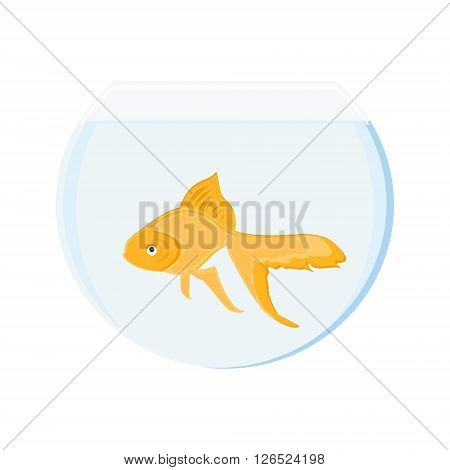 Vector illustration realistic goldfish in bowl. Gold fish swimming in transparent round glass bowl aquarium
