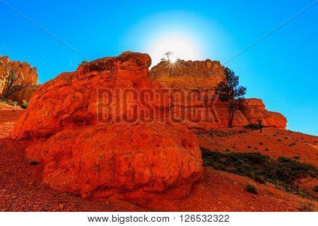 Hoodoos In Red Canyon In Utah, Usa.