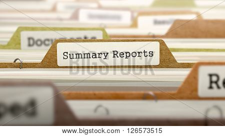 File Folder Labeled as Summary Reports in Multicolor Archive. Closeup View. Blurred Image. 3D Render.