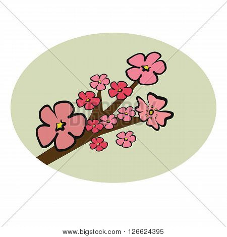 Cherry Blossom branch illustration vector with pink petals flower on circle isolated on white background