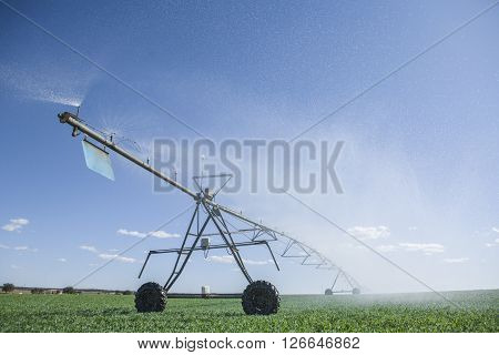 Center pivot irrigation system with sprinklers at work under sunrays Badajoz Spain poster