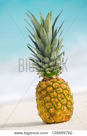Pineapple Fruit On Sand Against Turquoise Caribbean Sea Water