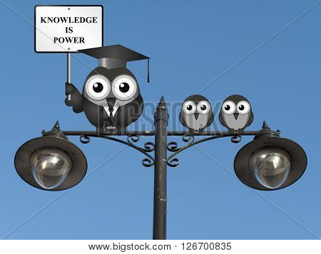 Knowledge is power sign with bird teacher and students perched on a lamppost against a clear blue sky