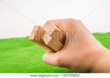 Brawn Wooden dominos püeces on green grass