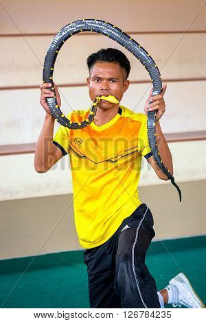 Phuket Thailand - April 10 2016: tamer holds a poisonous snake in his mouth