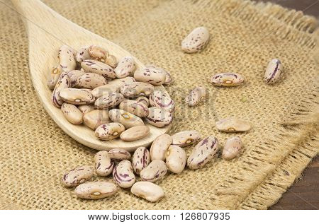The Saluggia beans