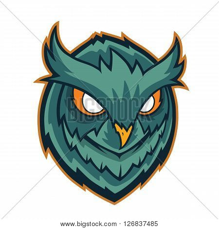 Clipart picture of an owls head cartoon mascot character
