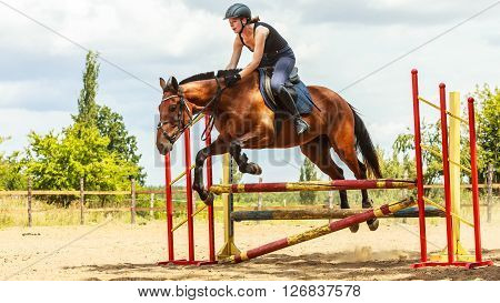 Active woman girl jockey training riding horse jumping over fence. Equestrian sport competition and activity.