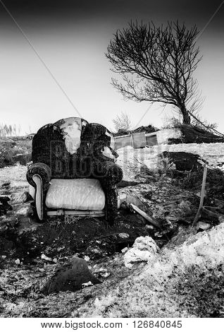 Abandoned Armchair And Leaning Tree Monochrome