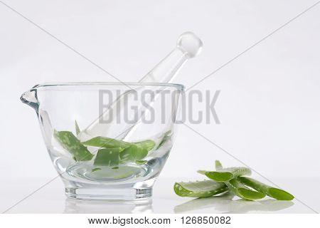 Medecinal plant concept Mortar with aloe vera leaves.