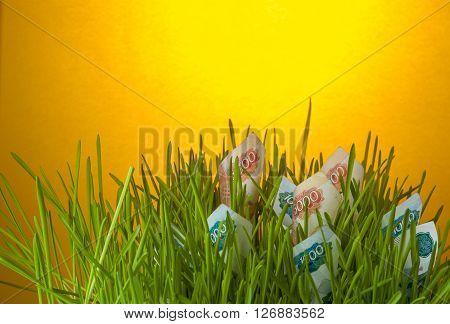 Ruble bills in green grass. Investment growth appreciation of ruble. Financial concept.