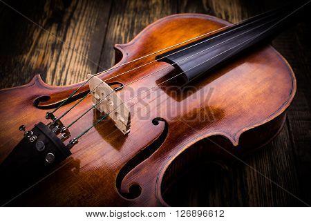 Violin Strings And Bridge