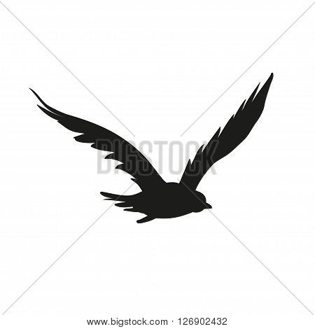 Vector silhouette of the Bird of Prey in flight with wings spread
