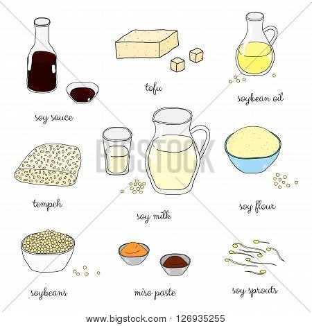 Hand drawn colored soy foods isolated on white background. Soy sauce, oil, milk, flour, sprouts, miso paste, soybeans, tempeh. Japanese soy products. Healthy diet concept.