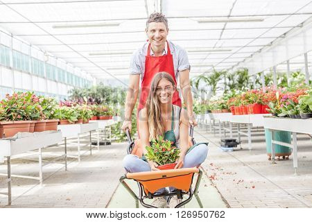 Sellers Couple Have Fun Pushing The Wheelbarrow In A Greenhouse
