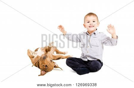 Cheerful boy and playful pit bull puppy together isolated on white background