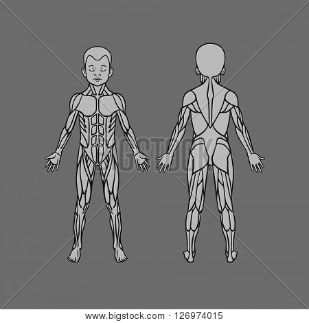 Anatomy Child Baby Vector & Photo (Free Trial) | Bigstock