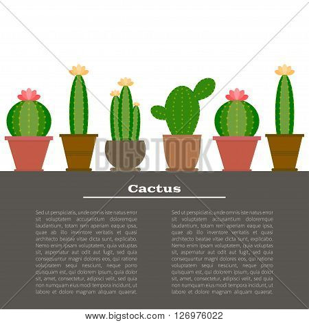 Cactus illustration background in vector with place for your text. Cartoon Cactus Illustration. Green and exotic cactus plant. Flat style vector illustration of cactus.