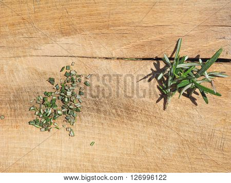 Rosemary Plant On Cutting Board