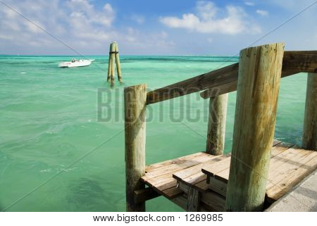 Tropical Dock 2