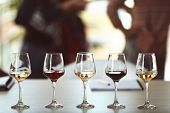Many glasses of different wine in a row on a table. Tasting wine concept poster