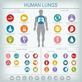 Medical infographics. Lungs function and health. Lung cancer and tuberculosis: risk factors and symptoms. Vector illustration. poster