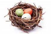 three speckled eggs in bird's nest over white background poster