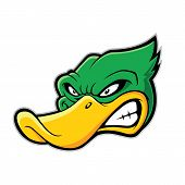 Clipart picture of a duck head cartoon mascot character poster