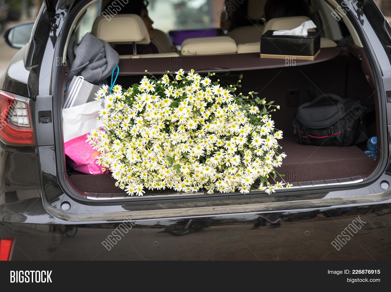 Pile Daisy Flowers Car Image Photo Free Trial Bigstock