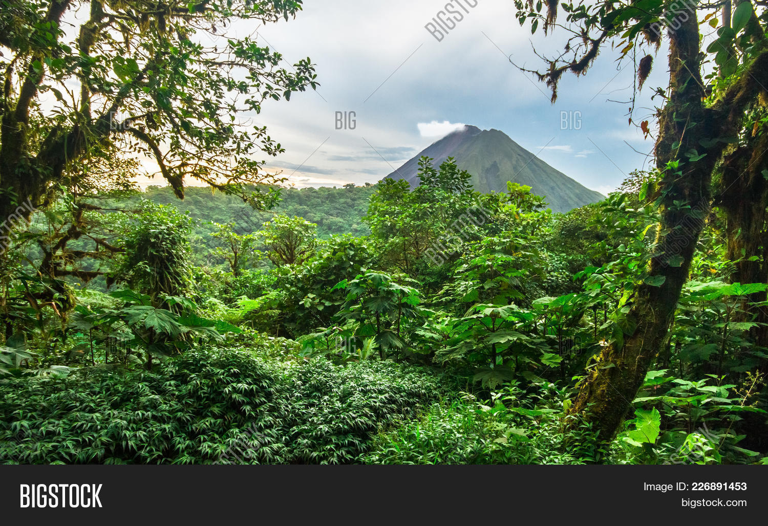 Volcan arenal powerpoint template powerpoint template volcan rainforest powerpoint template 60 slides toneelgroepblik Gallery