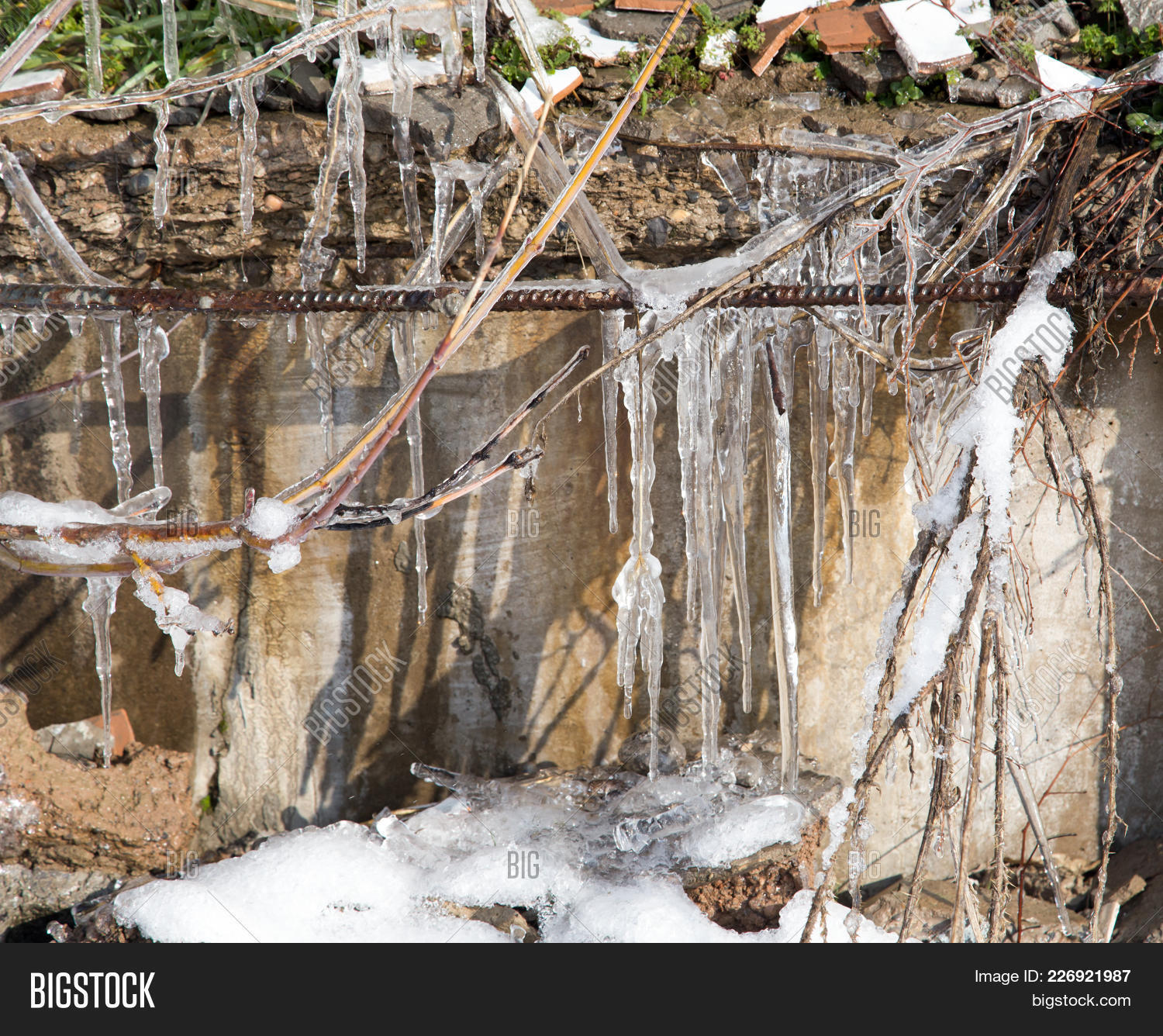 icicles on the branches powerpoint template icicles on the