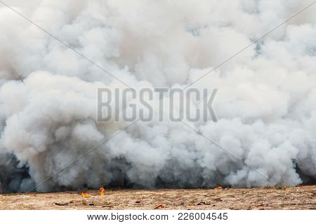 Smoke Background,texture. Design Elements. Abstract Art,smog Abstract Background,close Up